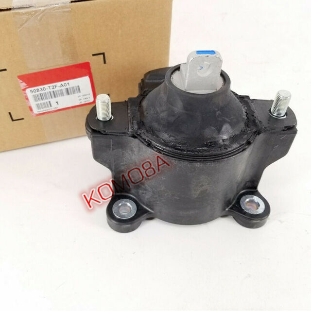 New Front Engine Motor Mount For 15-16 Acura Tlx 13-16