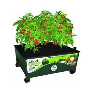 Image Is Loading Emsco City Pickers Patio Garden Grow Box With