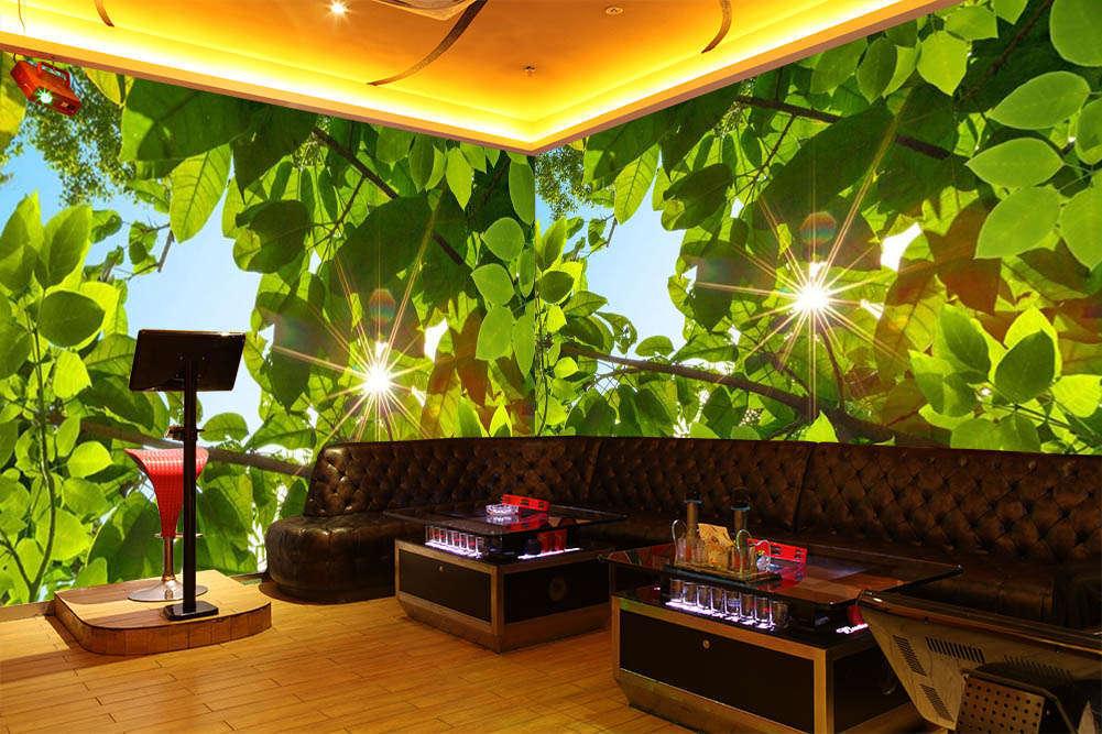 Green Leaf Of Sunshine 3D Full Wall Mural Photo Wallpaper Print Home Kids Decor