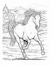Dover Nature Coloring Book: Wonderful World of Horses Coloring Book ...