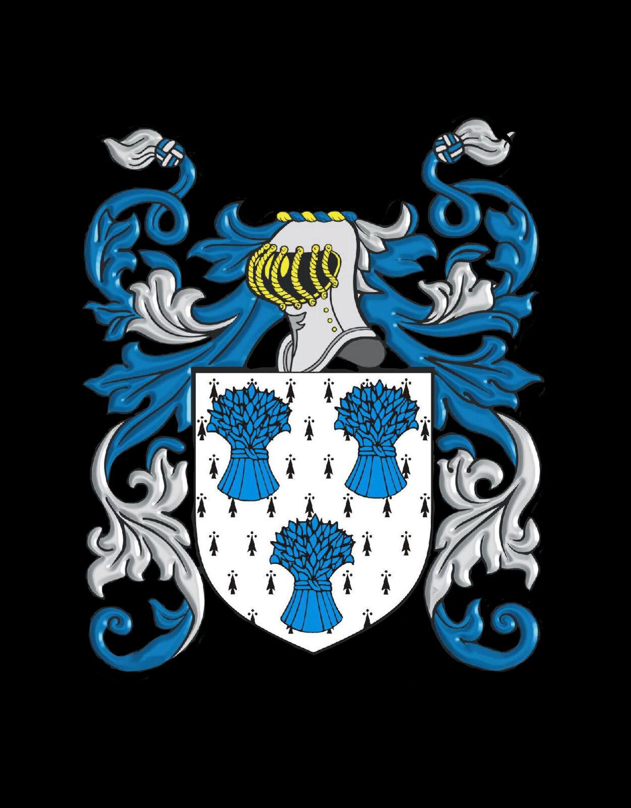 Ideley Inghilterra STEMMA DI FAMIGLIA cognome STEMMA Gemelli custodia custodia custodia personalizzata e53c3c
