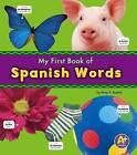 Spanish Words by Katy R. Kudela (Paperback, 2016)