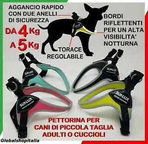 Pettorina imbracatura per cane cani piccola taglia pinscher cucciolo russell tre