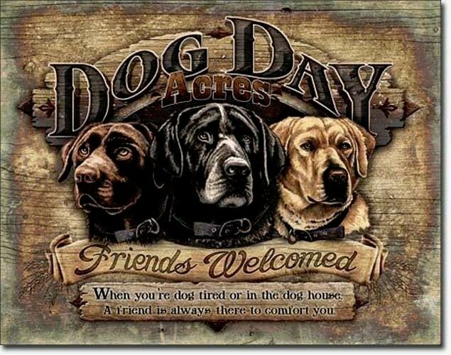 Dog Day Hunde Blechschild Plakat Schild Deko Sign Retriever Labrador Setter *553