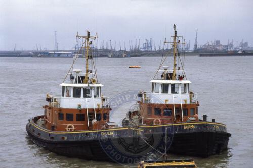 10X15 Photograph BURMA /& DHULIA Alexandra Towing Tugs At Gravesend 6X4
