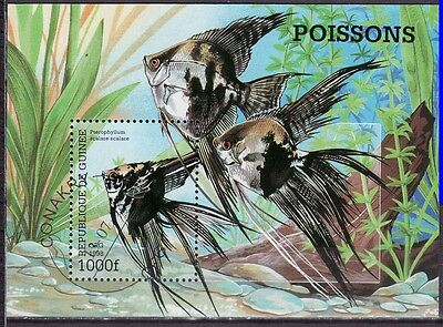 Guinee 1998 - Vissen/Fish/Fische