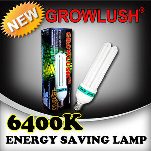 New-Released-Growlush-130W-6400k-energy-saving-CFL-grow-light-Hydroponics