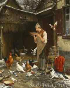 Feed Bird Hen Cat 8x10 Print Picture 1545 The Pigeon Lover by Eugene Remy Maes