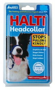 AUTHENTIC TCOA HALTI HEAD HALTER COLLAR NO PULL ALL SIZES FREE SHIPPING IN USA