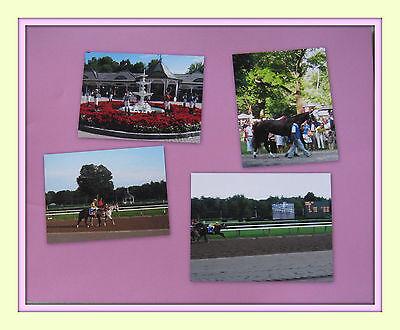 "Rachel Alexandra Saratoga Workout Photo 8/"" x 10-24/"" x 30/"""