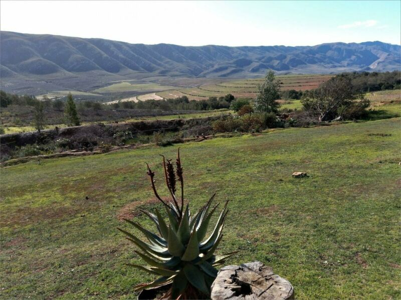 Stand For Sale in Uniondale Rural