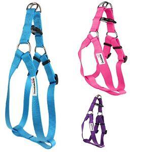 Doodlebone-Dog-Puppy-Harness-Adjustable-Bold-Nylon-Rings-5-Colours