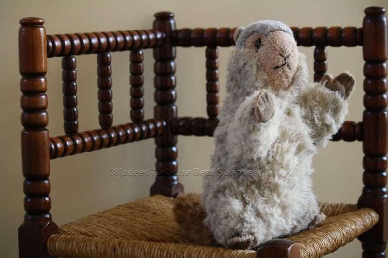 Steiff Molly Murmel Marmot Button & Tag 1978-84