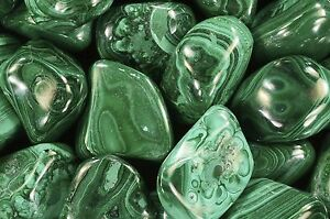 Polished-Birds-Eye-Malachite-1-034-Natural-Heart-Chakra-Healing-Crystal-Stone
