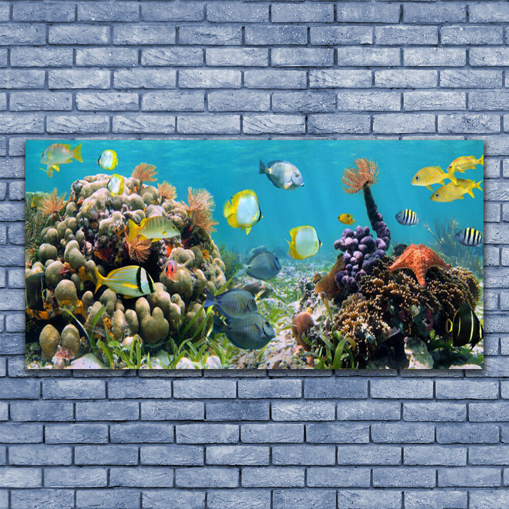 Canvas print Wall art on 140x70 Image Picture Coral Coral Coral Reef Nature 40f7a2