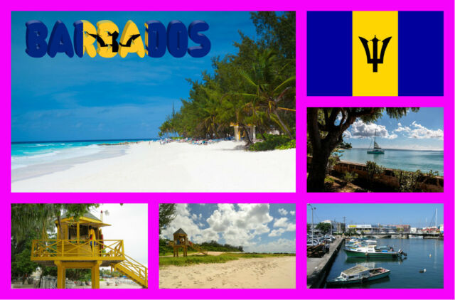 BARBADOS -  SOUVENIR NOVELTY FRIDGE MAGNET / FLAGS / SIGHTS / NEW / GIFTS