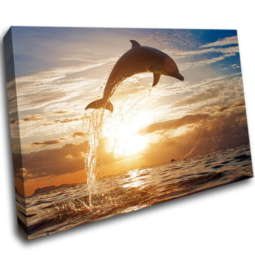 Dolphin Sunset Sea Ocean Canvas Wall Art Framed Room Print Picture S461