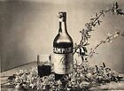 Pubblicità vintage Campari aperitivo bitter old advertising reklame werbung A2