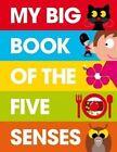 My Big Book of the Five Senses by Patrick George (Hardback, 2014)