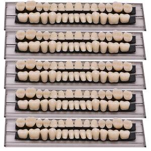 140pc-5Set-Denture-Acrylic-Resin-Full-Set-Teeth-Upper-Lower-Shade-23-A2-Dental