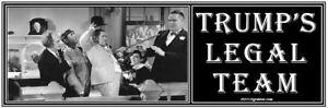 anti-TRUMP-039-S-LEGAL-TEAM-Giuliani-humorous-political-bumper-sticker