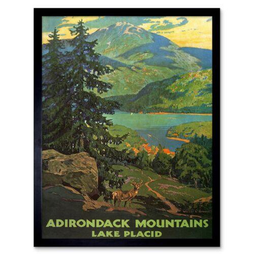Travel Adirondack Mountains Lake Placid Usa Tree 12X16 Inch Framed Art Print
