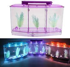 3-Compartment Acrylic Fish Tank Small Aquarium with LED Light Purple