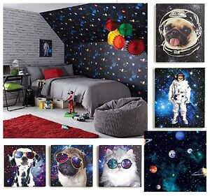 Cosmos space themed teenage boys bedroom wallpaper for Space wallpaper bedroom
