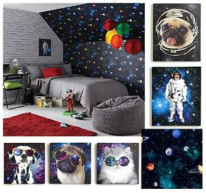 Cosmos space themed teenage boys bedroom wallpaper for Space themed bedroom wallpaper