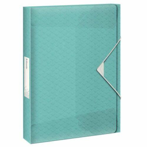 Esselte Ablagebox Colour/'Ice Dokumentenbox Sammelbox Sammelmappe A4 Gummizug II