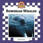 Bowhead Whales by Kristin Petrie (Hardback, 2006)