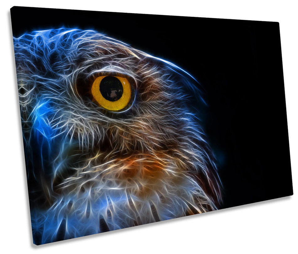 Owl Abstract SINGLE CANVAS WALL WALL WALL ART Picture Print 9cab50