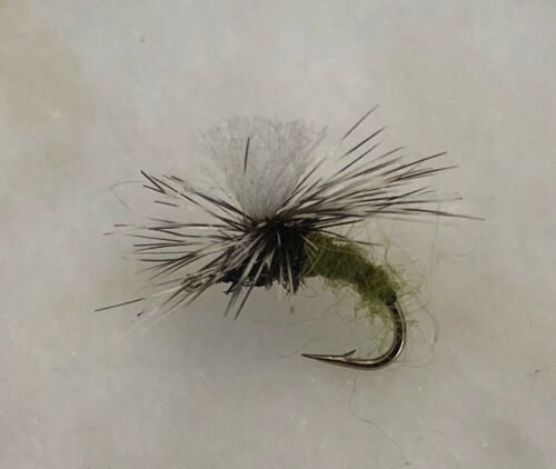 KLINKHAMMER OLIVE FLY FISHING DRY FLIES 12 FLIES X SIZE #16