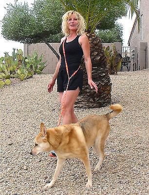 SERVICE DOG Imprinted Nylon Hands Free Leashes Waist Leads Walk Run Travel Shop