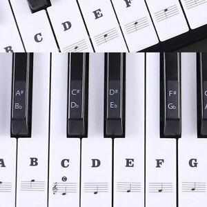 Music-Keyboard-Piano-Stickers-88-61-54-49-Key-Set-Learn-to-Play-Faster-Beginner