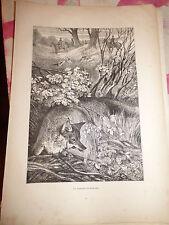 1886  gravure la chasse au renard (anonyme)
