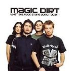 Magic Dirt - What Are Rock Stars Doing Today (2002)