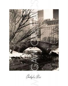 Christopher Bliss div New York 38x48 cm Kunstdruck ca