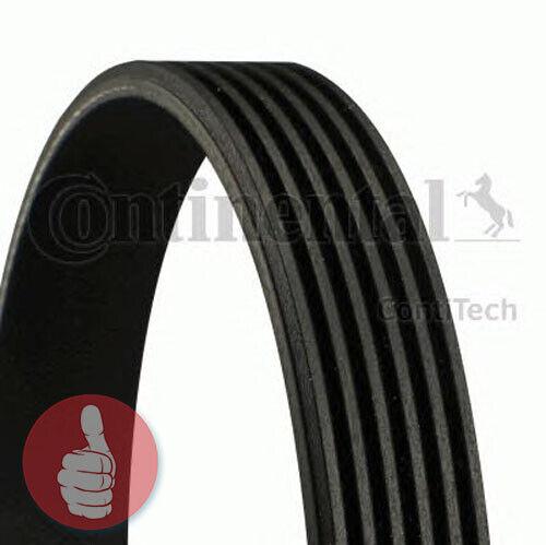 Original Contitech Courroies 6pk1560