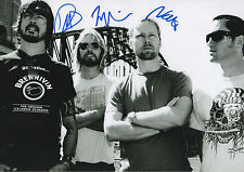 Foo Fighters Autogramme signed 20x30 cm Bild s/w