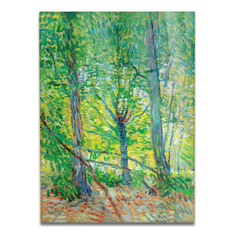Gelbbus - Vetro Acrilico - Vincent Van Gogh - Alberi