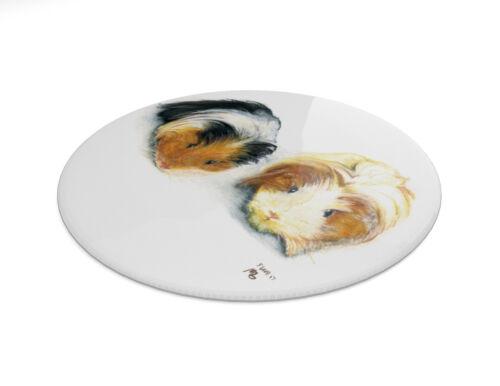 Two Guinea Pigs pin badge 7.7cm diameter