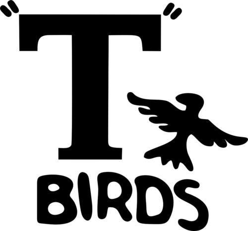 "T birds Grease Iron On Vinyl Transfer Fancy Dress Jacket T-shirt /""T/"" Bird"
