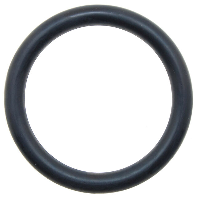 Menge 1 St/ück Dichtring//O-Ring 224 x 5,3 mm NBR 70