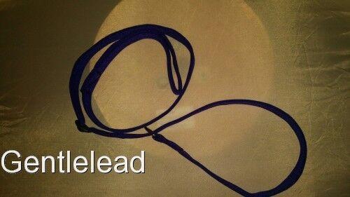 BULK Acquisti all'ingrosso sliplead Slip Lead Imbottito Cinghia 25mm confezioni da 1,5, 10