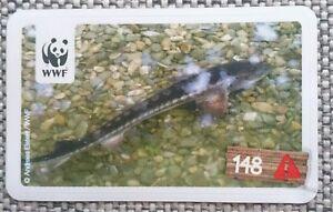 """Sammelkarten Sticker WWF Tierabenteuer Nr.148 """"europäischer Stör"""" gefährdete Art"""
