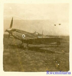 Org-Photo-US-Spitfire-Fighter-Plane-w-Black-Cat-Emblem-on-Airfield