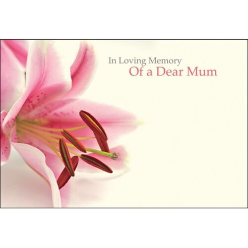 Grande sympathie cartes fleuriste relative 9 Per Pack funérailles hommages Choisir Style