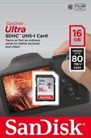 SanDisk Ultra PLUS 16GB SDHC Karte - (SDSDUNC-016G-GN6IN)