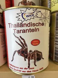 Thailändische Taranteln